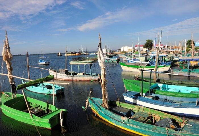trinidad, casilda, pescaderia especializada, pesca