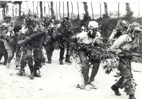 sancti spiritus, milicias de tropas territoriales, far, fuerzas armadas revolucionarias, combatientes de la revolucion cubana