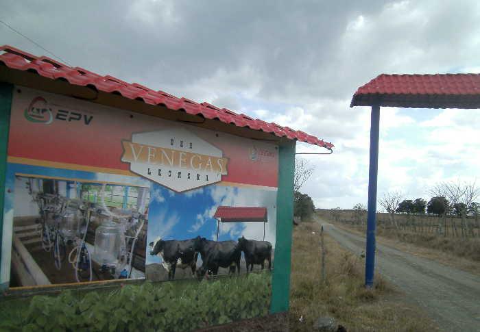 sancti spiritus, yaguajay, venegas, ganaderia, huracan irma