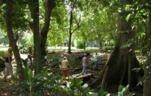 biodiversidad, jardín botánico, medio ambiente, Sancti Spíritus