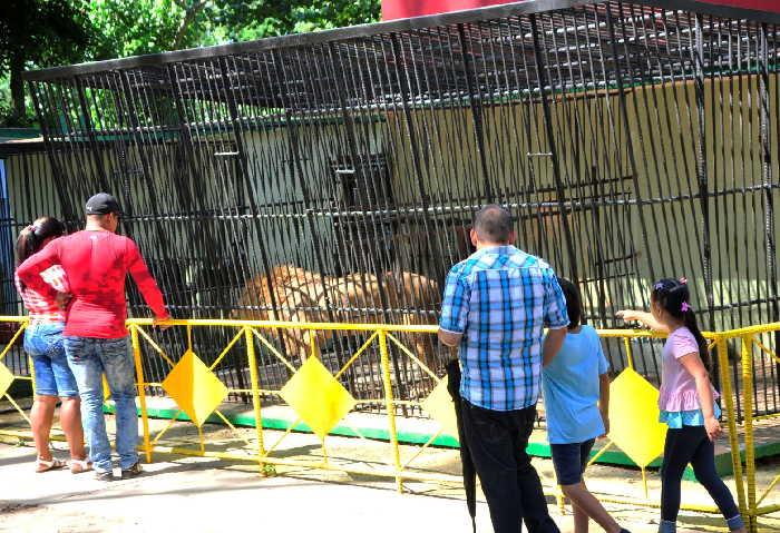 zoológico, Sancti Spíritus, verano