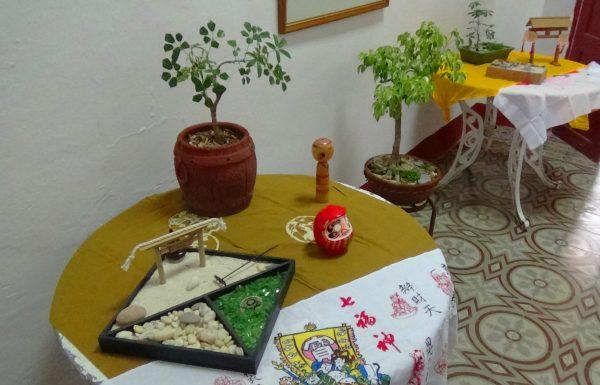 Japón, Sancti Spíritus, Guayabera