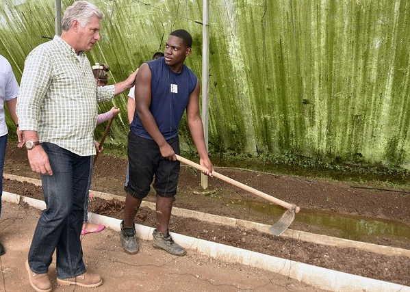 cuba, pinar del rio, miguel diaz-canel, presidente de cuba