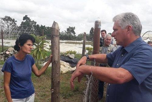 Díaz-Canel. Pinar del Río, huracán Michael