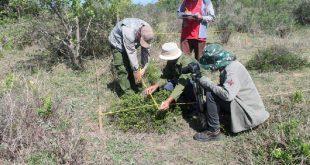trinidad, ecosistema, salud, flora y fauna, jardín botánico