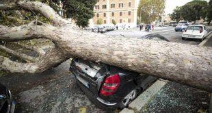 italia, desastres naturales, lluvia, muertes