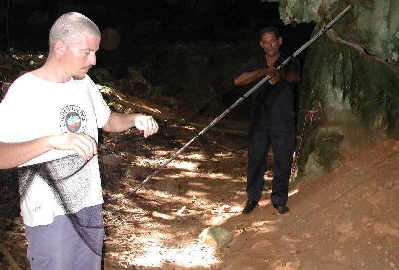 sancti spiritus, grupo sama, murcielagos, museo de historia natural, guamuhaya