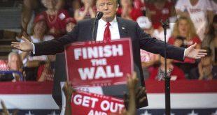Donald Trump, Estados Unidos, elecciones