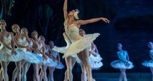 cuba, ballet, festival internacional de ballet de la habana