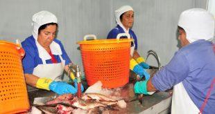 sancti spiritus, industria pesquera de sancti spiritus, episan,pesca