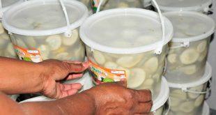 sancti spiritus, turismo cubano, frutas selectas, vegetales, agricultura