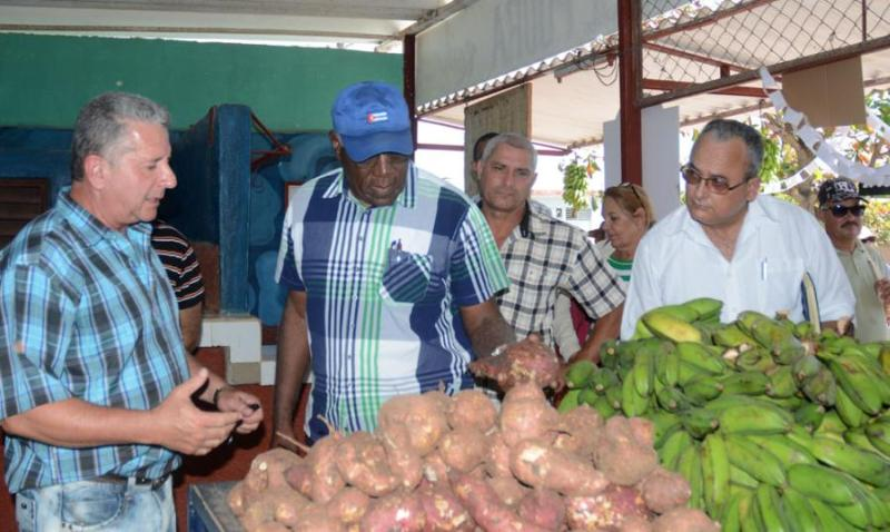 jatibonico, central uruguay, zafra azucarera, salvador valdes mesa, sancti spiritus, agricultura, produccion de alimentos, banao, mercados agropecuarios