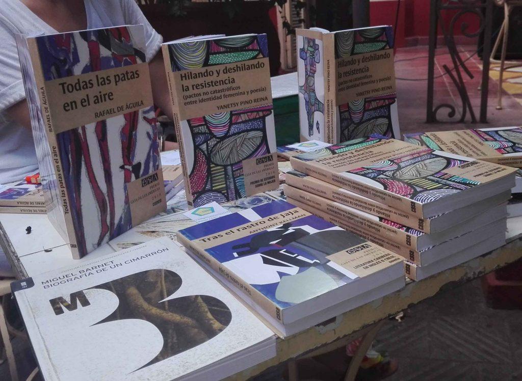 El libro propone a la crítica literaria latinoamericana un concepto que genera un procedimiento de análisis.