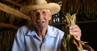sancti spiritus, tabaco, vega de tabaco