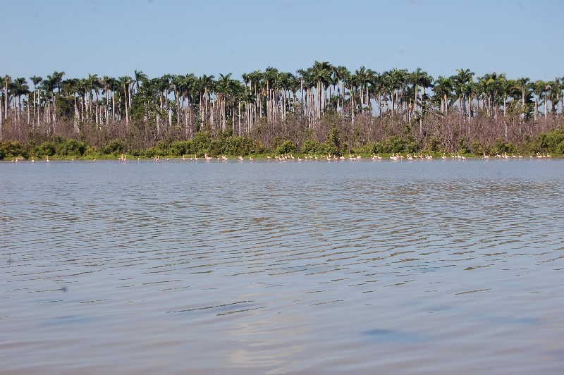 sancti spiritus, parque nacional caguanes