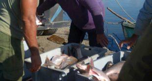 yaguajay, pesca, episan, ueb pescazaza, casilla especializada