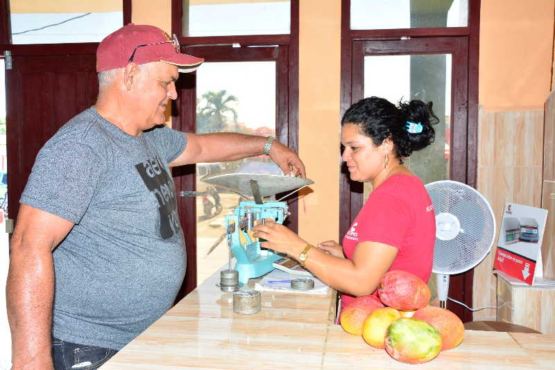 sancti spiritus, acopio, productos agricolas, taguasco, ministerio de la agricultura, mercado de nuevo tipo