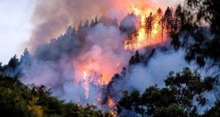 Brasil, incendios, Amazonía