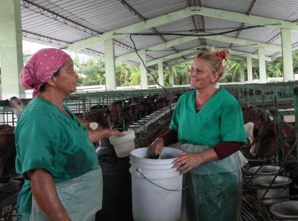 sancti spiritus, ganaderia, managuaco, dos rios, federacion de mujeres cubanas. fmc