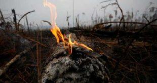 brasil, amazonia, incendios, g-7