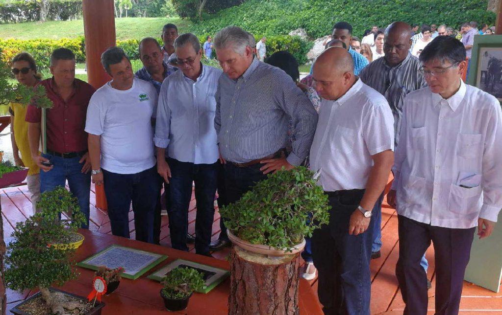 cuba, la habana, jardin botanico, miguel diaz-canel bermudez, presidente de cuba