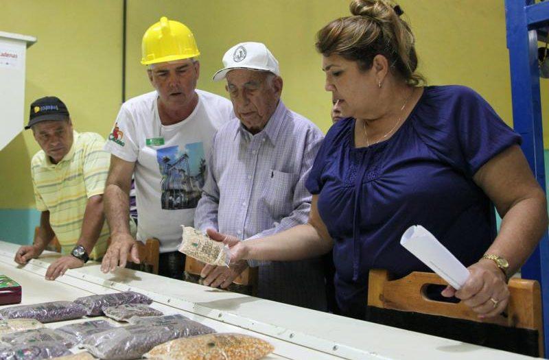 sancti spiritus, jose ramón machado ventura, producción de alimentos, secadero de granos, valle del caonao, yaguajay