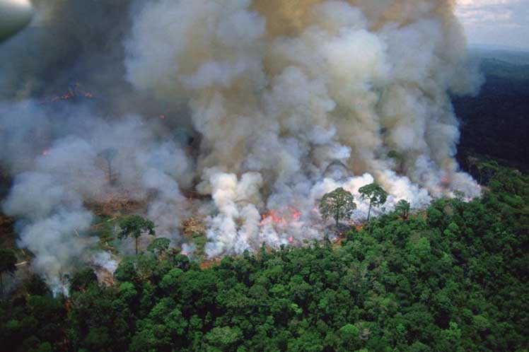 brasil, incendio, medio ambiente