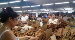cuba, fmc, miguel diaz-canel, federeacion de mujeres cubanas