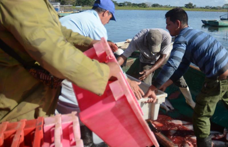 sancti spiritus, acuicultura, pesca, industria pesquera