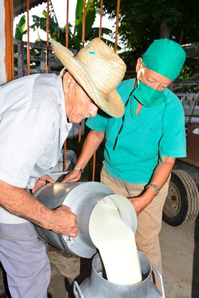 acopio de leche en sancti spiritus (3)