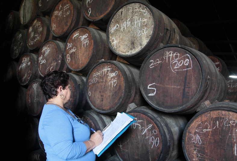 La fábrica se encuentra en un proceso de formación de una cooperación mixta con España. (Foto: Vicente Brito / Escambray)