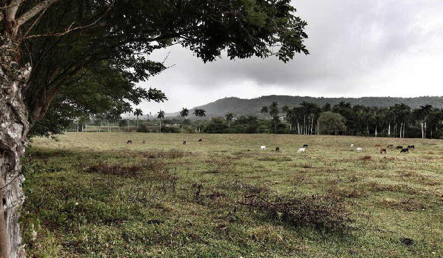 jatibonico, arroyo blanco, historia de cuba, serafin sanchez valdivia