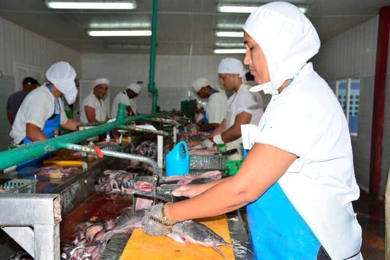 cuba, economia cubana, movimiento obrero, central de trabajadores de cuba, ctc