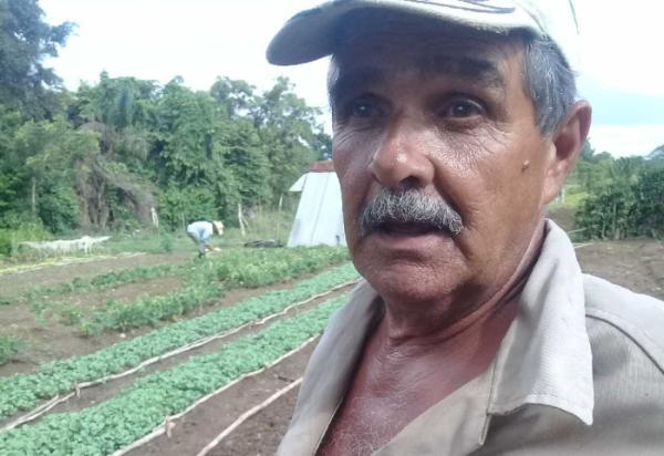 sancti spiritus, agricultura, rendimiento agricola, produccion de alimentos, cultivos varios