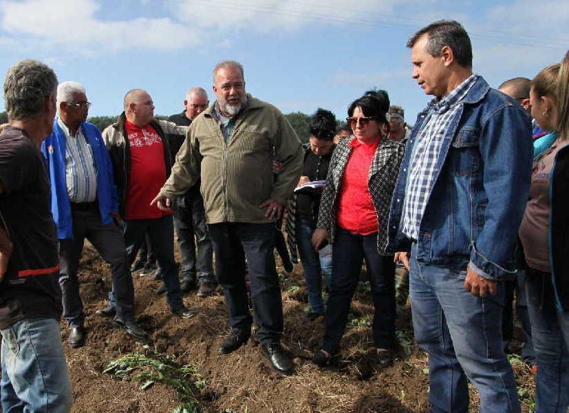 yaguajay, manuel marrero cruz, primer ministro, , producciones agricolas