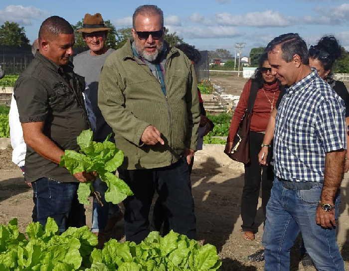 yaguajay, manuel marrero cruz, primer ministro, , producciones agricolas, materiales de la construccion, construccion de viviendas, agricultura urbana