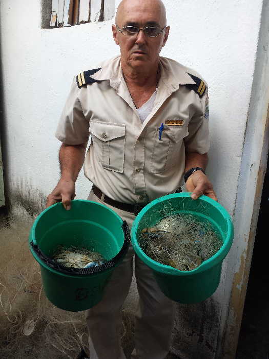 Inspectores oficiales de Sancti Spíritus realizan operativos para tratar de frenar la impunidad de los pescadores furtivos.