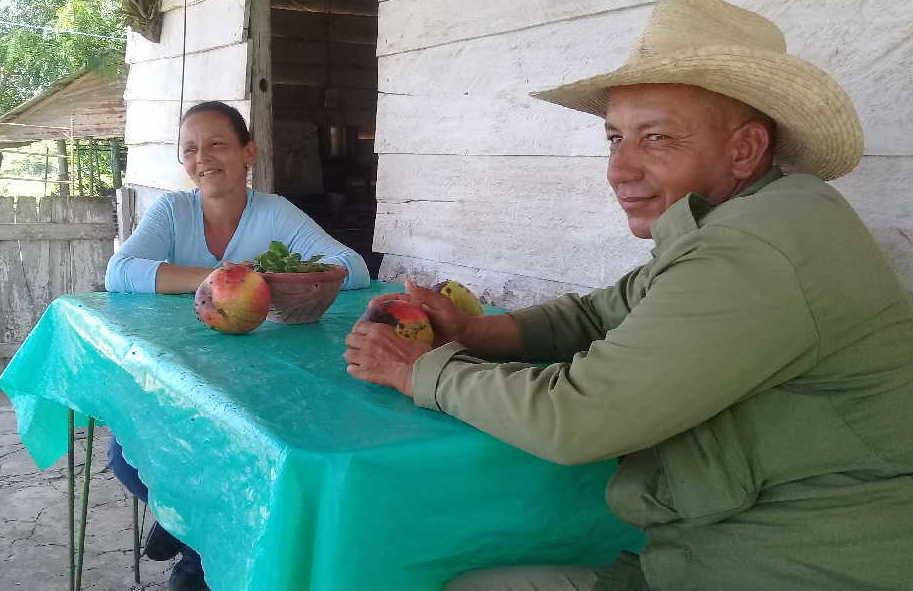 cabaiguan, cpa, campesinos, ganado vacuno, cooperativa de produccion agropecuaria