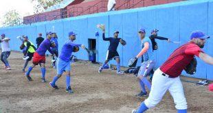 Béisbol, Gallos, Serie Nacional