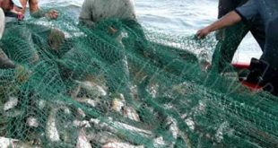pesca, cuba, gaceta oficial, normas juridicas