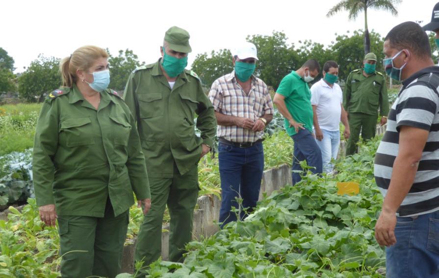sancti spiritus, coronavirus, covid-19, consejo de defensa, produccion de alimentos, salud publica