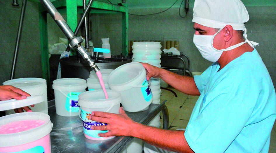 Lácteo, Yogurt, Coronavirus