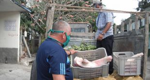 Anap, campesinos, producción de alimentos