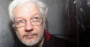 reino unido, julian assange, wikileaks, coronavirus, covid-19