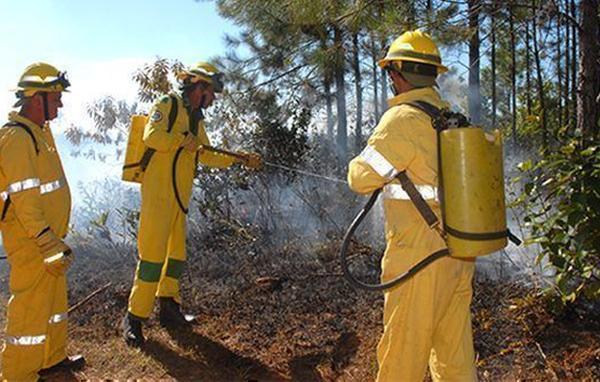 cuba, incendios forestales, desastres naturales, medio ambiente, guardabosques