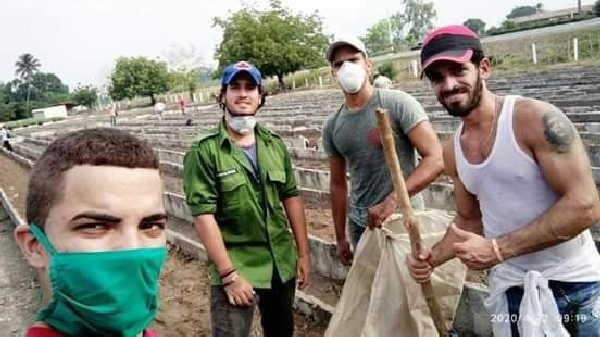 Momentos del trabajo, junto a otros jóvenes universitarios, en el organopónico Celia Sánchez, de la ciudad cabecera.
