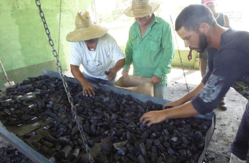 sancti spiritus, sustitucion de importaciones, rubros exportables, economia cubana, emprova, azcuba, agricultura, pesca