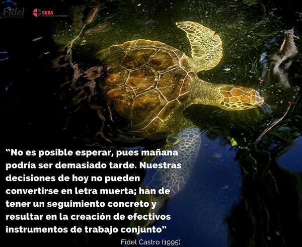 cuba, medio ambiente, dia mundial del medio ambiente, fidel castro