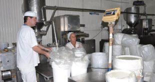 Industria Alimenticia, Lácteo, pesca