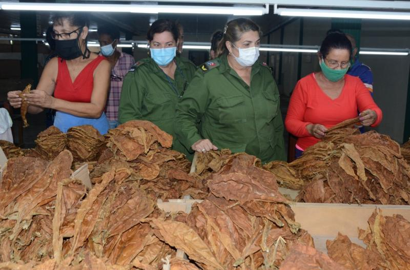 sancti spiritus, 26 de julio, asalto al cuartel moncada, obras sociales, construccion de viviendas, escogida de tabaco, neonatologia